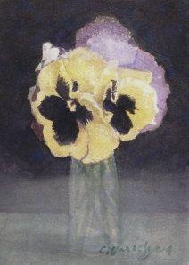 violet-geel ab